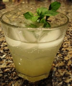 Lemon Ice Refreshner at PakiRecipes.com